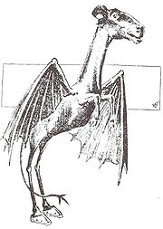 List of cryptids - Wikipedia
