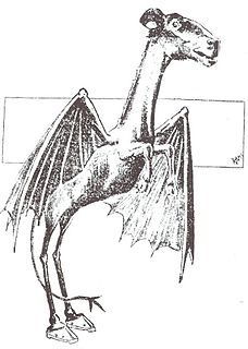 Jersey Devil also known as the Leeds Devil, legendary creature said to inhabit southern New Jersey, USA