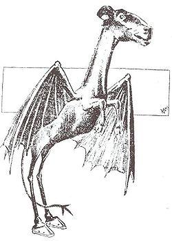 Jersey Devil Philadelphia Post 1909.jpg