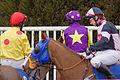 Jockeys at Plumpton Races (4369939329).jpg