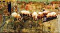 Joseph Crawhall, 1884 - Pigs at the Trough.jpg