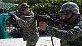 KAMANDAG 2017 Lima Co Conducts Training with Philippine Marines - Image 1 of 10.jpg