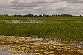 Kakadu National Park-25 (8309760714).jpg