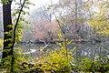 Kanał Sobieskiego, rezerwat przyrody Morysin, Wilanów, Warszawa 8.jpg