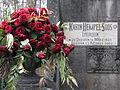Karin-Hempel-Soos 001.jpg