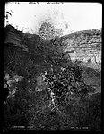 Katoomba Falls (4903868588).jpg