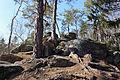 Kirchschlag in der Buckligen Welt - Naturdenkmal WB-100 - Radigundenstein I.jpg