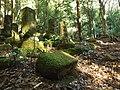 Kiwadahata, Kimitsu, Chiba Prefecture 292-0537, Japan - panoramio.jpg