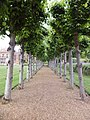 Knebworth House Gardens-5850623896.jpg