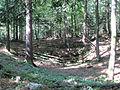 Krim Cave Slovenia - fenced.JPG
