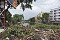 Krishnapur Canal - Dum Dum - Kolkata 2017-08-08 4033.JPG