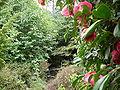 Kubota Garden 17.jpg