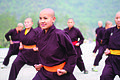 Kung Fu Nuns of the Drukpa Order.jpg
