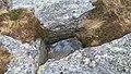 Kvitneset Hareid WW2 Tysk Bunkers 09.jpg