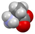 L-alanine-from-xtal-Mercury-3D-sf.png