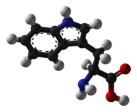 Ball-and-stick model of L-isomer