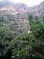 La région d´el ourit Tlemcen.jpg