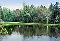 Lake - panoramio (10).jpg