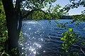 Lake Istok, Leningrad Oblast, 2019-06-22-1.jpg
