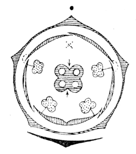 Bloemdiagram