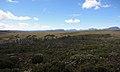 Landscapes on the Overland Track.jpg