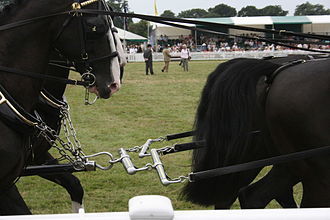 Whippletree (mechanism) - A set of whippletrees or leader-bars for the two leaders of a four-horse team