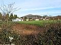 Ledbury Cricket Club - geograph.org.uk - 657179.jpg