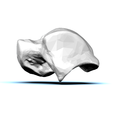 Left Talus bone 10 lateral view.png
