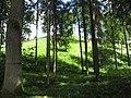 Lentvario sen., Lithuania - panoramio (23).jpg