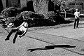 Levitation training for beginners - )) (37077189953).jpg