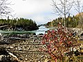 Liard River Beauty (10312492904).jpg