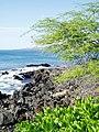 Line3651 - Flickr - NOAA Photo Library.jpg
