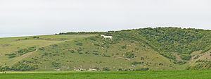 Cuckmere Valley - Chalk horse figure near Litlington