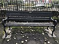Long shot of the bench (OpenBenches 2818-1).jpg