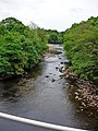 Looking North East up the River Swale - geograph.org.uk - 447224.jpg