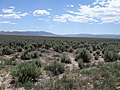Looking South Southwest Across Sagebrush Toward Distant Mountains - panoramio.jpg