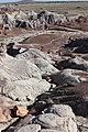 Looking down the Blue Mesa badlands.jpg