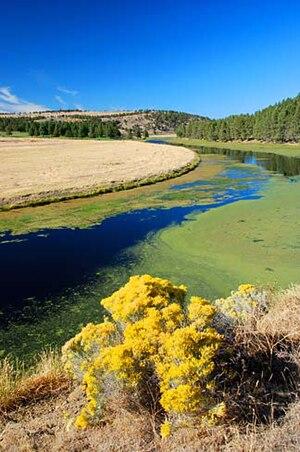 Lost River (California) - The Lost River near Bonanza, Oregon