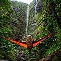 Lost in the Wilderness follow @kalenemsley on ig (Unsplash).jpg