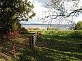 Lough Owel - geograph.org.uk - 1016018.jpg