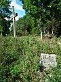 MOs810 WG 19 2019 Skockie Ogonki (evangelical cemetery in Sarbia, pow. wagrowiecki) (3).jpg