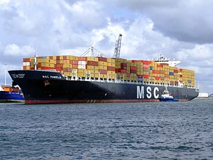 MSC Pamela p09, at the Amazone harbour, Port of Rotterdam, Holland 29-Jul-2007.jpg
