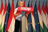 MSZP Congress July 2014-17.JPG