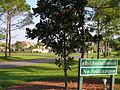 Majestic 19942 Lake Vista Circle 004.JPG