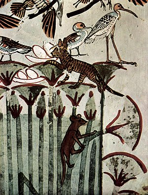 Nilotic landscape - Detail of Papyrus, with a cat stealing the eggs of the water birds. From the Tomb of Menna, painted plaster, first half of the 14th century BC, Thebes