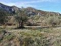 Malla de Llop from Famoca hike (26314786983).jpg