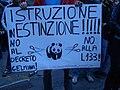 Manifestazione contro la legge 133 e il decreto Gelmini, Pisa 23 ottobre 2008.jpg