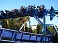 Manta at SeaWorld Orlando 78.jpg