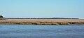 Marshes of Glynn, Brunswick, Georgia, USA.jpg