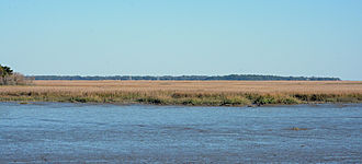 The Marshes of Glynn - The Marshes of Glynn, as seen from Brunswick, Georgia, USA.  The trees are on St. Simons Island, about 4 miles away, and the St. Simons Lighthouse is visible on the right.